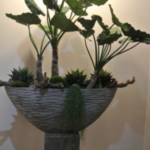 Dirkx Plantenbak