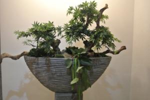 Dirkx Kunstplanten